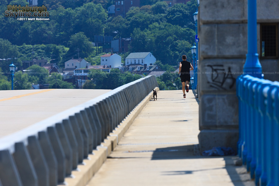 Walking a dog on the 31st Street Bridge
