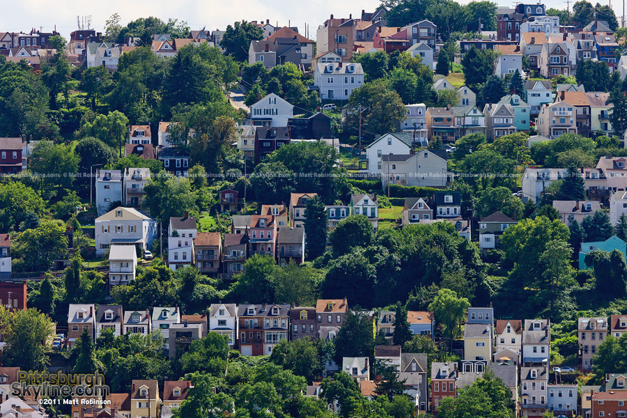 South Side slopes in summer