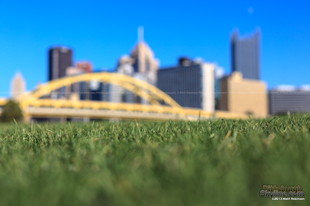 Bug's point of view of Pittsburgh